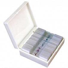 Zenith 25-piece microscope slide set