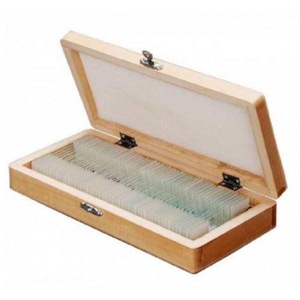 Zenith microscope slide set (50 pcs)